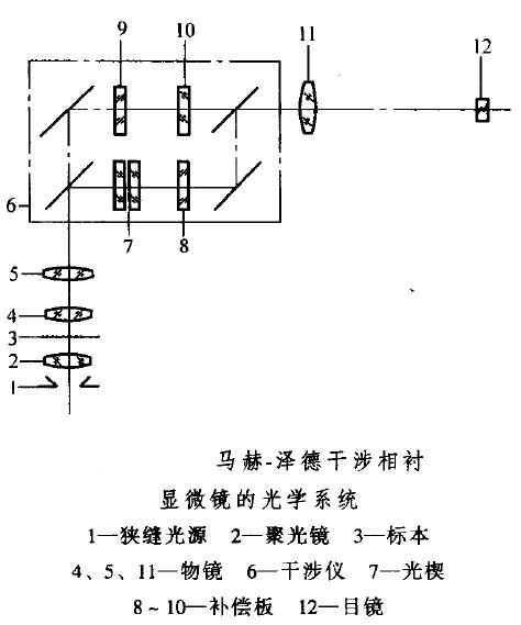 显微镜――微分干涉(DIC)